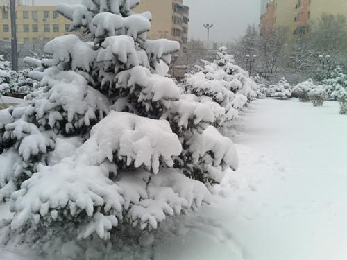今日乌鲁木齐大雪[中国投资资讯网交易在线]