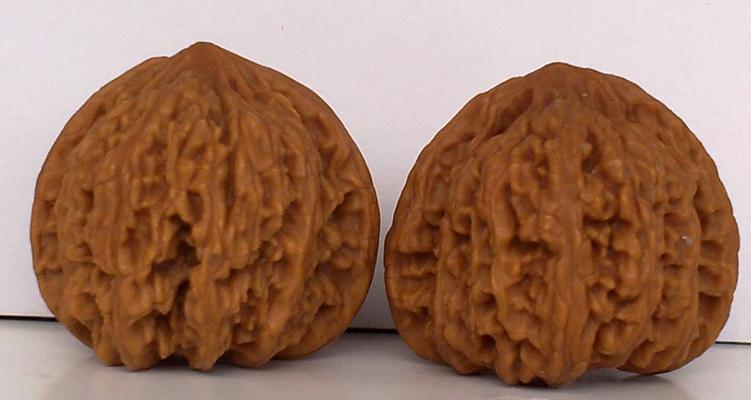 木雕狮子头侧面图片