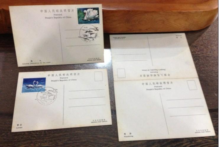 邮票大卖场 纪特文编jt销封栏目 → 80年代 万维生 签名 天鹅明信片